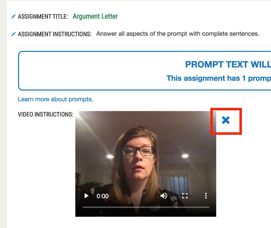remove_video_from_prompt.png